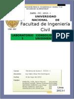 INFORME CONSOLIDACION LABO1.docx