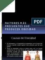 Factores Más Frecuentes Que Producen Obesidad
