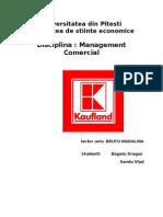 Proiect Kaufland Brb