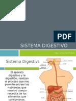 4.Sistema Digestivo