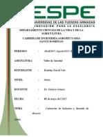 Drenado de Abceso y Castracion (1)