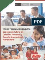 TOE- Sesiones de Tutoria en DD.HH y Derecho Internacional Hu..pdf