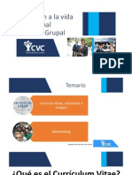 Asesoría Grupal de CV