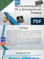 Proteus Fin