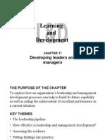 LDChapter17PPslides (1)