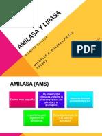 amilasaylipasa-130321002723-phpapp02.pdf