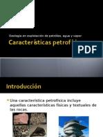 caracteristicas petrofisicas