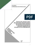 Dissertação Fabio Reis Mota
