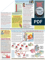 Smart Meter dangers 2-page brochure