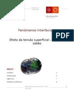 Fenómenos Interfaciais PL2