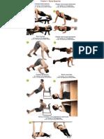 Treino de Musculação Para Estudantes