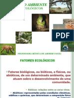 CAP.4_-_CIENCIAS_DO_AMBIENTE_-_2011.1.pdf