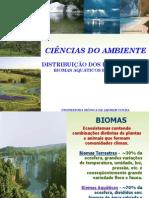 CAP.7_-_CIENCIAS_DO_AMBIENTE_-_2011.1.pdf