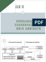 CAP.9_-_CIENCIAS_DO_AMBIENTE_-_2011.1.pdf