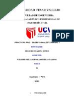 Informe de Practica Pre Profesionales 1