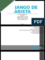 Diseño Tenango de Arista