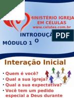 P1 - Introdução Ao Módulo 1