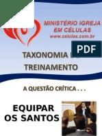 P7-Taxonomia de Treinamento