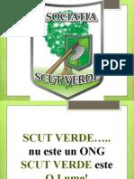 scutverde (1)