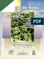 Cafe Manejo cal Adub Parana.pdf
