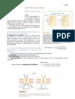 Potencial_de_membrana_e_potencial_de_ação