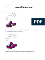 Thyroid Hormon