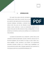 172872735 Elaboracion de Bebida Fermentada de Cascara de Pina