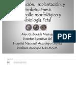 Embriogenesis, Feto y Placenta
