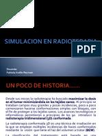 SIMULACION SIN TEST.pdf