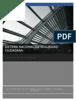 SISTEMA-NACIONAL-DE-SEGURIDAD-CIUDADANA.docx