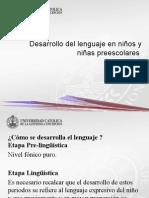 (3)Desarrollo Del Lenguaje