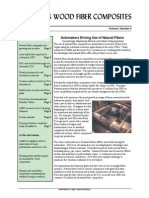 PP2-029 V1N1Feb02 - Natural Wood Fibre & Composites