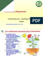 Fotosíntesis y Respiración