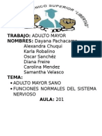 Adulto Mayor Sano Sn
