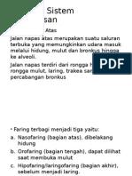 Anatomi Sistem Pernapasan.pptx