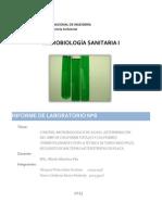informe-8-de-microv