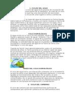 CICLOS DEL AGUA.docx