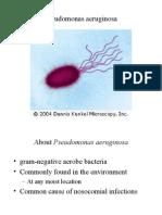 microbiologia de pseudomona no fermentadora