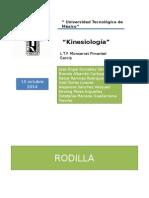 Kinesiologia de Rodilla