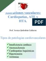 Alt Vasculares e HTA