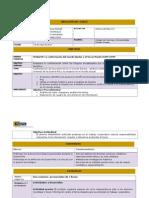 Estrategia Final Práctica Docente 2015