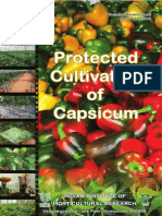 Capsicum Technical Bulletin to Iihr Web Site