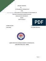 PROJECT REPORT (Risk Management)Santu.docx 111111111111