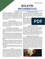 Boletín Diciembre 2014