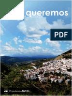 Programa de Gobierno 2015 - 2019. Ayuntamiento de Torres.