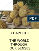 Chapter 1-Science (form 2)