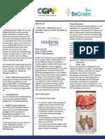 cgpp4 2 rosderra summary