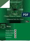 Virus(Trojan Horses & Salami attack)©
