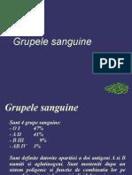 Grupele Sanguine