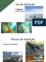 Riscos de Extinção- Slides